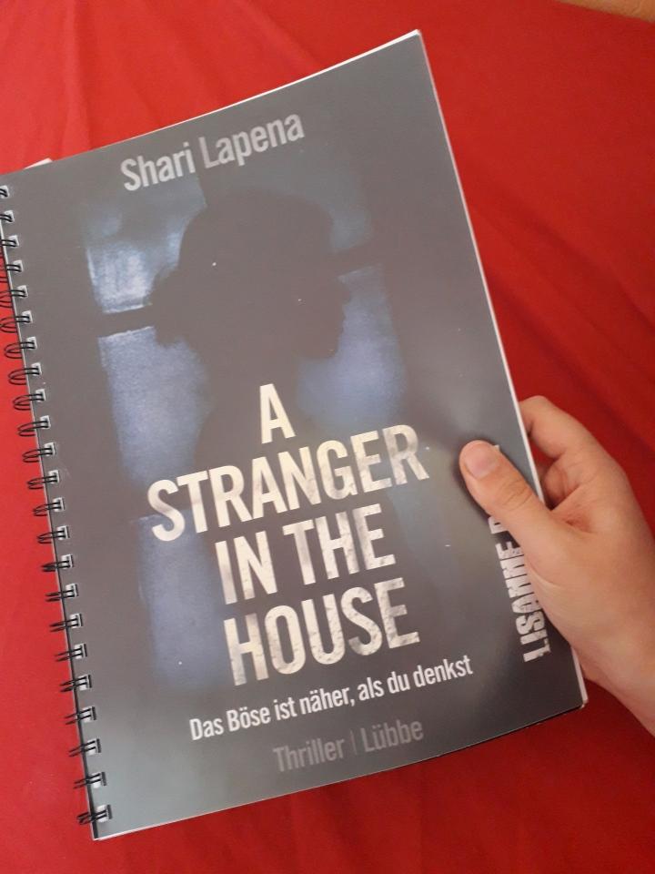 A stranger in the house – Ein beklemmenderThriller